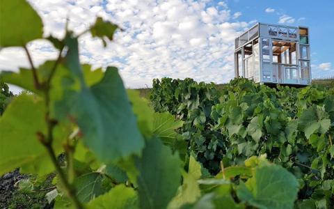 Loge fenêtre - Champagne Trepo Leriguier - Vanault le Chatel